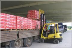 红牛装卸运输作业